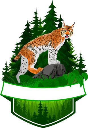 lynx での森林のベクトルエンブレム  イラスト・ベクター素材