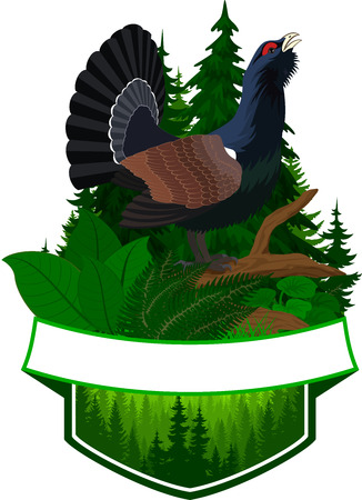Vector woodland emblem with capercaillie - wood grouse Illustration