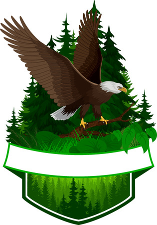 Woodland emblem with bald eagle isolated on white