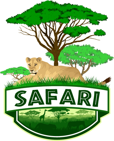 African Savannah safari emblem with lioness Çizim