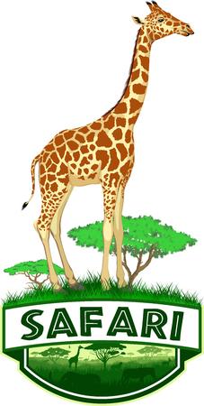 vector african savannah safari emblem with girrafe
