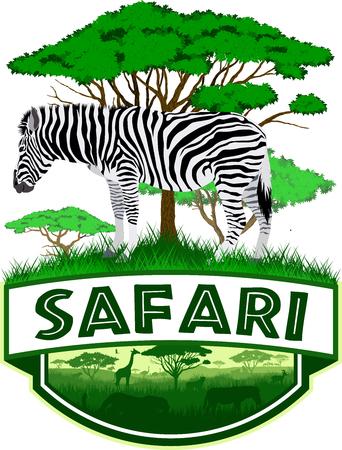 vector african savannah safari emblem with zebra