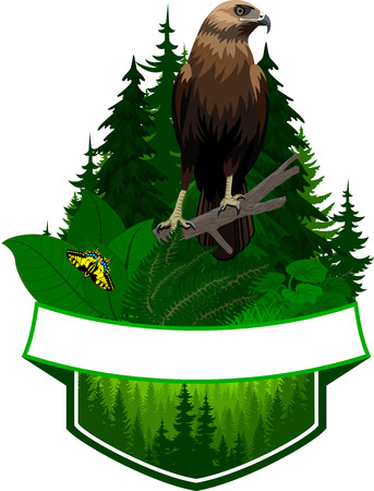 vector woodland emblem with hawk and butterfly