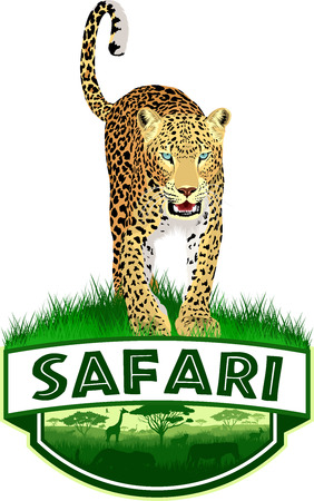 African savannah safari emblem with leopard in colorful illustration.