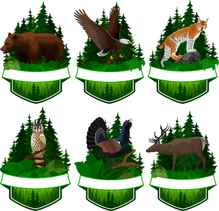 set of vector woodland emblems with lynx, bear, eagle, deer and capercaillie