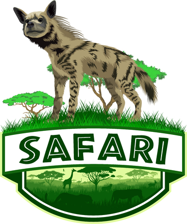 vector african savannah safari emblem with striped hyena Illustration