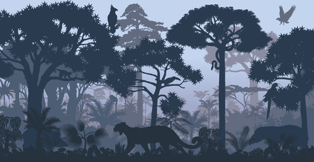 Vector evening tropical rain forest jungle background with jaguar, harpy, monkey, parrot, toucan, anaconda and boar.