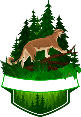 A vector woodland emblem with puma cougar (Puma concolor) or mountain lion Illustration