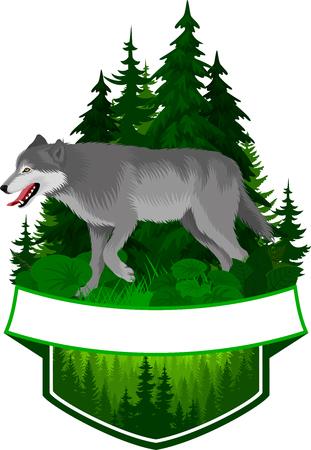 Vector woodland emblem with gray wolf illustration. Illustration
