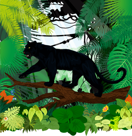 vector black panther leopard jaguar in jungle rainforest Vectores