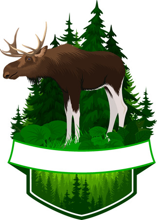 vector woodland emblem with moose bull Illustration