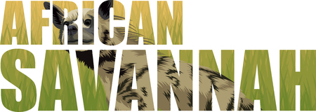 Vector African striped hyena illustration on white background.