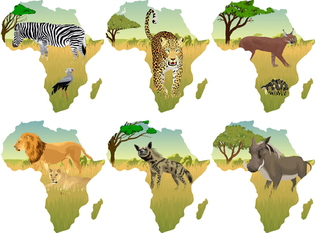 African savannah with different animals - vector illustration