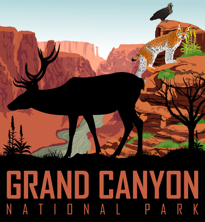 Colorado river in Grand Canyon National Park with deer, eagle and lynx. Illustration
