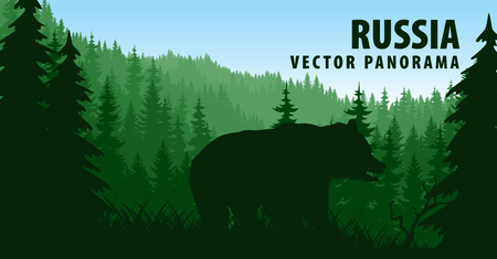 vector panorama of Russia with brown bear in woodland taiga forest Illustration