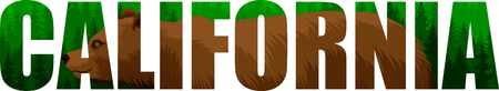 vector California - American state word with grizzly bearl and mountains forestland forest