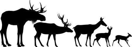 conjunto de vectores de siluetas de alces y ciervos