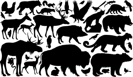 vector set of woodland animals silhouettes Ilustrace