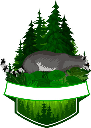 vector woodland emblem with racoon