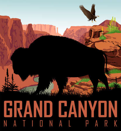 Vector Colorado river in Grand Canyon National Park with buffalo bison and bald eagle Çizim