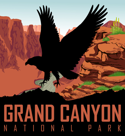 Vector Colorado river in Grand Canyon National Park with bald eagle