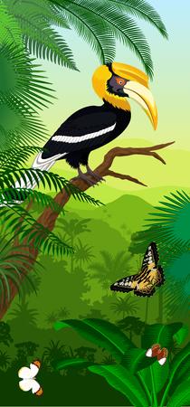 Vector Jungle rainforest vertical baner with great hornbill and butterflies Illustration