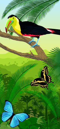 Vector Jungle rainforest vertical baner with rainbow-billed toucan and morpho butterflies Illustration