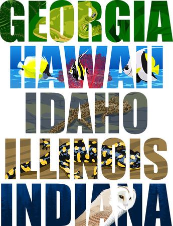 vector set of American states word with animals - Georgia, Hawaii, Idaho, Illinois, Indiana