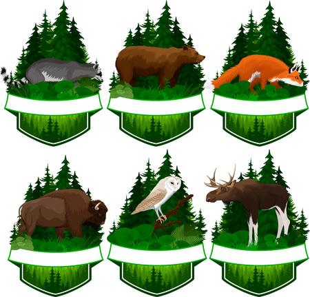 set van vector bos emblemen met kerkuil, rode vos, wasbeer, grizzlybeer, eland stier en zubr buffel bizon Vector Illustratie