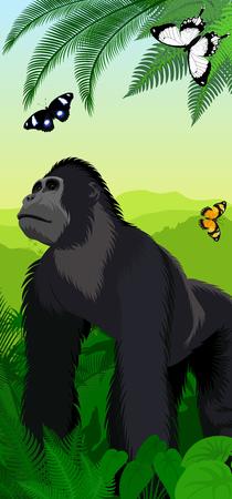Vector Jungle rainforest vertical baner with male gorilla and butterflies