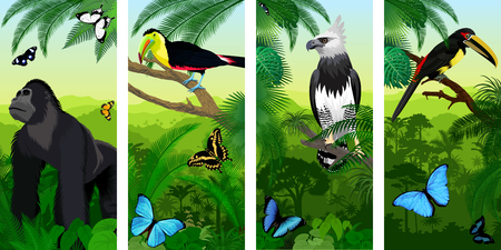 Vector Jungle rainforest vertical baner with male gorilla, pale-mandibled aracari toucanet, harpy eagle, rainbow-billed toucan and morpho butterflies Çizim