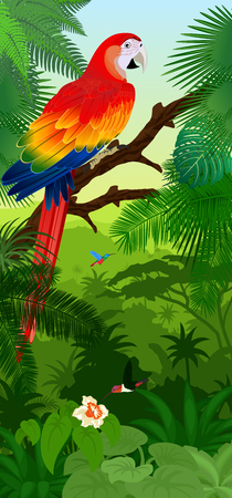 Vector Jungle rainforest vertical baner with parrot red scarlet macaw ara and hummingbirds Illustration