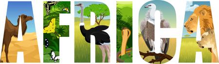 Africa illustration with camel, butterflies, ostrich. cobra snake, Griffon vulture, lion and lioness Иллюстрация