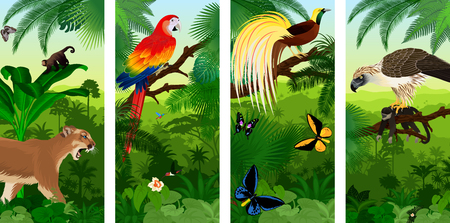 Jungle rainforest vertical baner with Lesser Bird of Paradisea, puma cougar, parrot red scarlet macaw arae, hummingbirds, birdwing butterflies and philippine Eagle with monkey