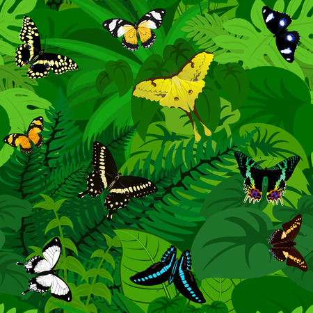 Seamless african tropical rainforest jungle background with butterflies