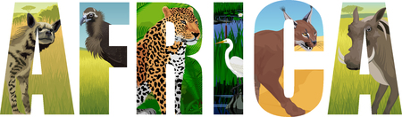 Africa illustration with leopard, vulture, Great white heron, striped hyena, caracal and common warthog