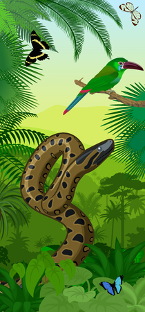 Jungle rainforest vertical baner with green anaconda, Crimson-rumped toucanet and tropical butterflies Illustration