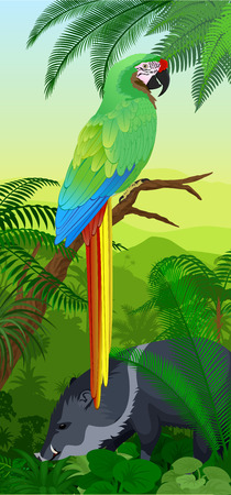 Green Jungle rainforest vertical baner with parrot green Stock Vector - 109201905