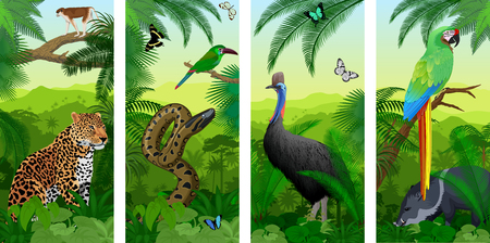 Green Macaw, wild pig peccary, cassowary, jaguar or leopard, ape monkey, Green anaconda, Crimson-rumped toucanet and tropical butterflies Stock Vector - 115277650