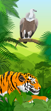 Griffon vulture and tiger rainforest vertical baner with rainforest Illustration