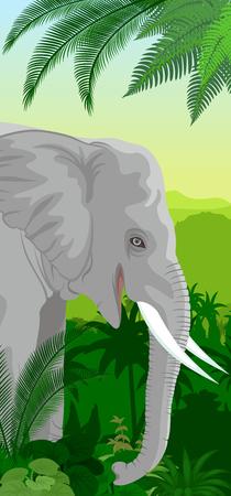 Vector Jungle rainforest vertical baner with elephant