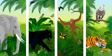 Set of vector jungle rainforest vertical baners with elephant, orangutan, griffon vulture, tiger, parrot, butterflies