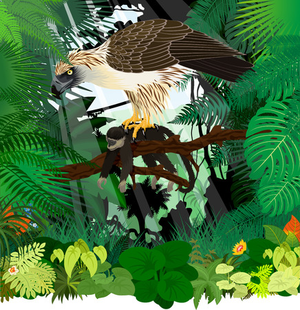 Vector philippine eagle with monkey in jungle rainforest