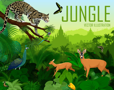 Vector myanmar jungle forest with clouded leopard, green peafowl, deers, frog and butterflies