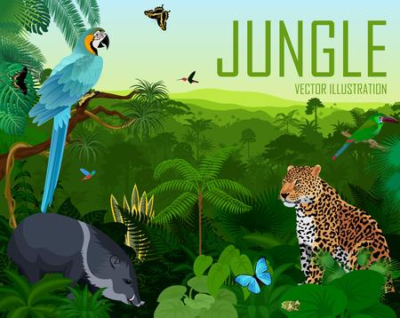 Vector brazil rainforest jungle forest with jaguar, parrot blue macaw ara, pig peccary, hummingbirds and butterflies
