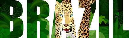 vector Brazil illustration with jaguar Ilustrace