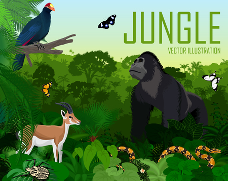 Vector rainbow with Rosss turaco, gazelle impala, python, male gorilla and butterflies