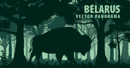 panorama de vecteur de Biélorussie avec bison buffalo zubr brun Vecteurs