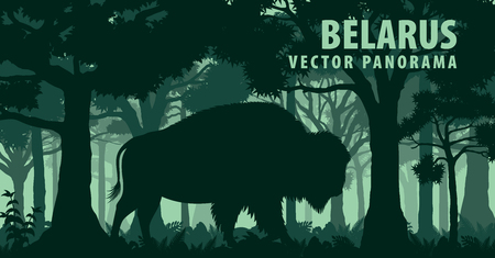 vector panorama of Belarus with brown zubr buffalo bison