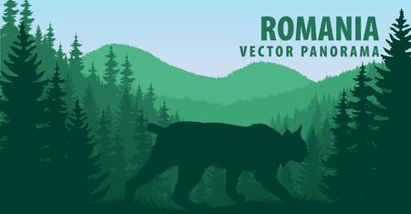 vector panorama of wild bobcat lynx Иллюстрация